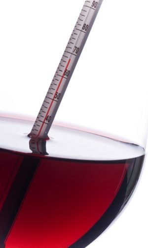 Close-up of a thermometer submerged in red wine, showing temperature of the wine in Fahrenheit, isolated on white.